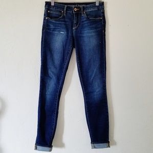 Articles of Society Distressed skinny jean